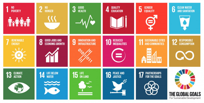 """Sustainable Development Goals (SDGs) - """"Can I Make a Difference?"""""""